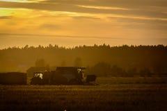 Landbouwers die aan een zonsondergang werken Stock Fotografie
