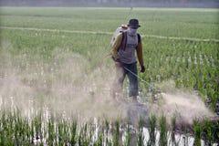 Landbouwers die gewassen bespuiten Stock Afbeeldingen