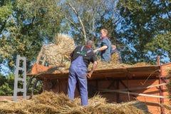 Landbouwers die hooi laden bij een traditionele hooi-wagen tijdens aDutch landbouwfestival Royalty-vrije Stock Afbeelding