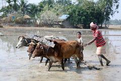 Landbouwers die landbouwgebied ploegen Stock Fotografie
