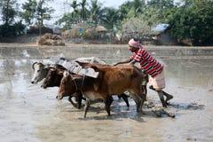Landbouwers die landbouwgebied ploegen Royalty-vrije Stock Fotografie