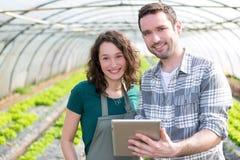 Landbouwers die stats op tablet letten op royalty-vrije stock foto