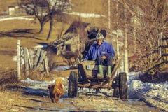 Landbouwers en paardkar Stock Fotografie