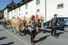 Landbouwers met een kudde van koeien op jaarlijkse transhumance in Engelb Royalty-vrije Stock Foto's