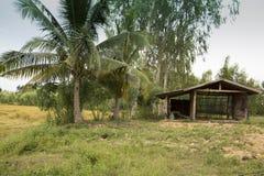 Landbouwers` s plattelandshuisje naast padie Stock Foto's