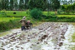 Landbouwers Thailand stock foto's