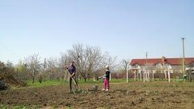 Landbouwersfamilie die op vegatable gebied zaailingsaardappels in de vroege lente planten stock video