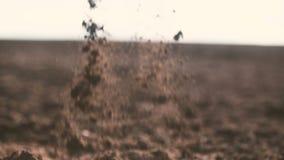 Landbouwershanden die en achter organische grond houden gieten Grond, Landbouw, Zonlicht stock video