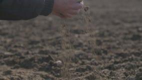 Landbouwershanden die en achter organische grond houden gieten Grond, Landbouw, Zonlicht stock footage