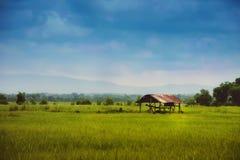 Landbouwershut op groen gebied Stock Foto