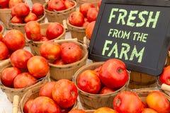 Landbouwersmarkt Stock Foto