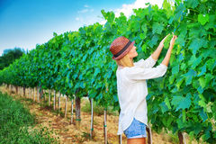 Landbouwersmeisje op wijngaard royalty-vrije stock foto's