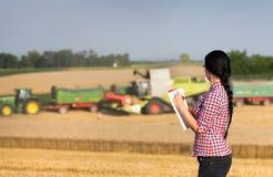 Landbouwersvrouw bij oogst stock foto