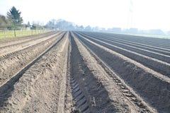 Landbouwgebied als achtergrond Royalty-vrije Stock Afbeeldingen