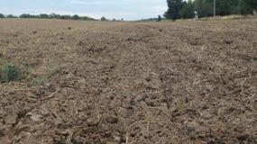 landbouwgebied na oogst: grond, grond en land stock foto