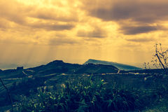 Landbouwgebied tegen mooie hemel met bewolkt en zonnestraal stock foto