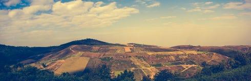 Landbouwgebied tegen mooie hemel met bewolkt en zonnestraal royalty-vrije stock foto's