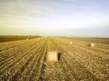 Landbouwgebieden in de herfst Stock Foto