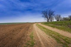 Landbouwgrond stock foto
