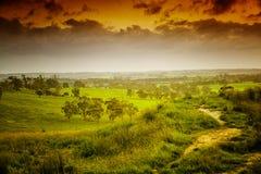 Landbouwgrond in Australië Stock Foto's