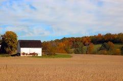 Landbouwgrond in de Herfst Stock Afbeeldingen