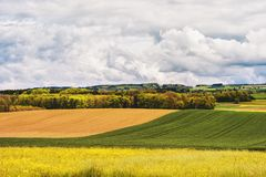 Landbouwgrond in de lente royalty-vrije stock afbeelding