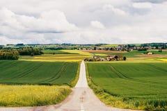 Landbouwgrond in de lente stock afbeeldingen