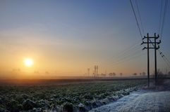Landbouwgrond in de ochtend Royalty-vrije Stock Afbeelding