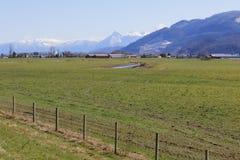 Landbouwgrond in de Vallei Fraser stock foto