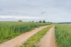 Landbouwgrond die William Kain Park in de Provincie van York, Pennsylva omringen Stock Afbeelding