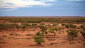 Landbouwgrond in droogte Stock Afbeeldingen