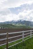 Landbouwgrond en Bomen in de wasatchbergen Royalty-vrije Stock Foto