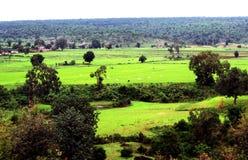 Landbouwgrond en wildernis scape Royalty-vrije Stock Foto