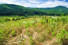 Landbouwgrond met bergen stock foto