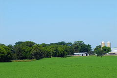 Landbouwgrond met schuren en silo's Royalty-vrije Stock Foto