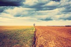 Landbouwgrond met stormachtige hemel Stock Foto's