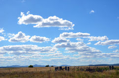 Landbouwgrond onder blauwe wolk gevulde hemel stock foto's