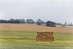 Landbouwgrond op plattelandsgebied Stock Foto's