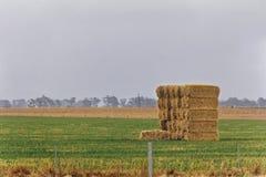 Landbouwgrond op plattelandsgebied Royalty-vrije Stock Afbeeldingen