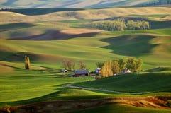Landbouwgrond in Palouse Washington royalty-vrije stock foto