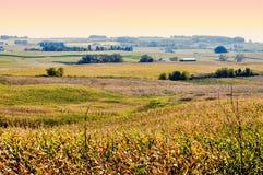 Landbouwgrond van Noordoostelijk Iowa Stock Afbeeldingen