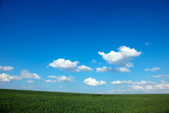 Landbouwgronden royalty-vrije stock foto's