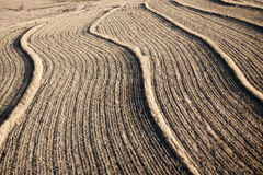 Landbouwgronden royalty-vrije stock fotografie