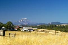 Landbouwgronden, Goldendale, WA Stock Afbeeldingen