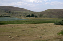 Landbouwgrondhooiberg Amerika Stock Afbeeldingen