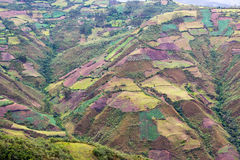 Landbouwgrondlandschap in Peru stock fotografie