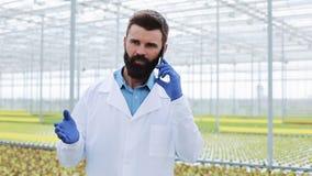 Landbouwingenieur in serre mobiel gebruiken, sprekend op smartphone stock videobeelden