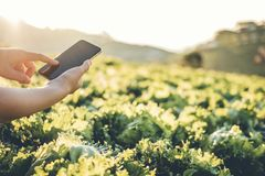 Landbouwlandbouwer die touchpad in Nappa-kool Fram in de zomer controleren royalty-vrije stock fotografie