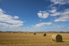 Landbouwlandschap Stock Foto's