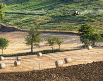 Landbouwlandschap met strobalen Royalty-vrije Stock Foto